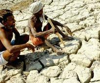 Congress demands 11 district of Gujarat be declared drought-affected