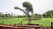 State govt asks local urban bodies to maintain 15% area as green zone