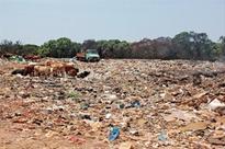 Panchgani and Mahabaleshwar face grave environmental threat