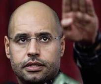 'Freed' Gaddafi son Seif al