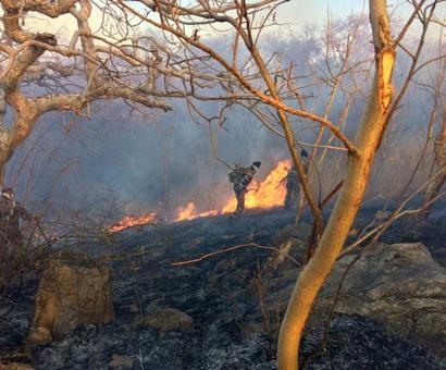 4 lakh litres of water later, Mount Abu wildfire continues to rage on