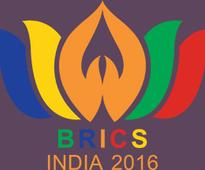 BRICS business leaders agreed that utilising individual country strengths