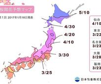 Planning on seeing sakura in Japan? Here's when it'll blossom in 2017