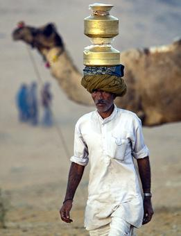 Camel milk, the new superfood