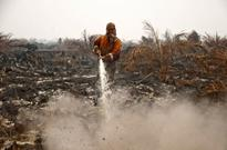 New haze fears as palm oil firms ditch landmark Indonesia pact