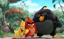 The Angry Birds Movie review: a blatant moneymaking project thats utterly vapid