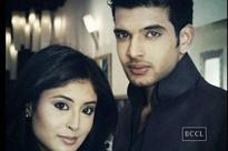 Exes Karan and Kritika to play lovers in new series
