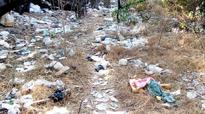 Bengaluru: Crucial lung space now a garbage dump