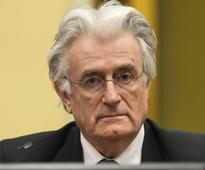 Karadzic appeals genocide conviction