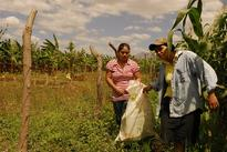 Climate impact on crops will hit poorest