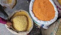 Tur dal burnt a hole in your pocket last year. This year, farmers face the heat