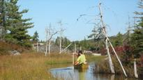 Annapolis Group to sue HRM for $119M over Blue Mountain Birch Cove Lakes rejection