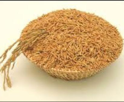 Withdraw export duty on de-oiled rice bran