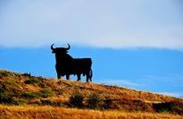 Blackstone vehicle to offer rare mezzanine Spanish RMBS opportunity
