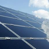 Solar power tree developed to solve world's energy problems