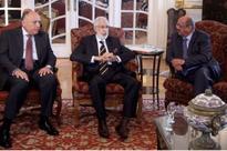 Egypt working for Libya political solution, says FM