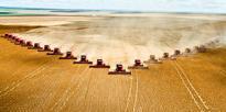 WWF: Companies Still Have a Massive Soy Footprint