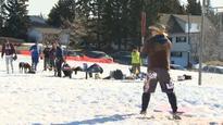 Winter slo-pitch tournament takes advantage of mild weather