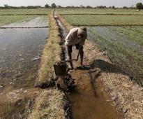 Punjab CM prepares to battle 'at any cost' over water