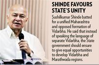 Shinde supports use of pellet guns