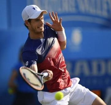 Murray doubtful for Wimbledon?