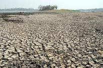 SC to hear PILs on drought-hit regions and bad loans
