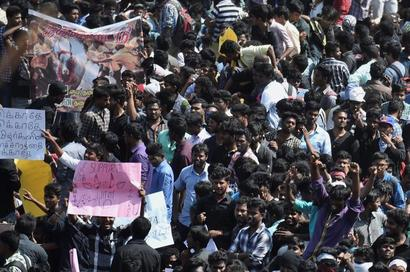 TN lawyers to boycott courts in support of Jallikattu