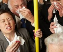 No Indication of Germs in Tubes, Buses: Survey