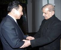 China Three Gorges ready to help Punjab develop small hydel projects
