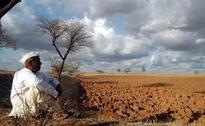 Telangana faces worst drought in living memory