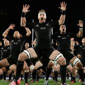 Rugby round-up: All Blacks still rule as Springboks endure year to forget
