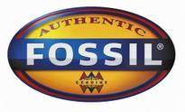 Fossil Group Inc (FOSL) Shares Up 4.8%