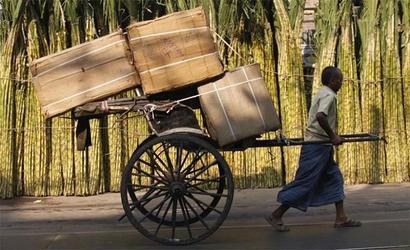 Kolkata is shell companies' favourite address