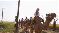BSF-IAF Joint Women Camel Expedition-2017 completes its journey across border villages