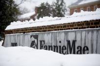 Fannie and Freddie Will Be Profitable After Their Next Bailouts, Too
