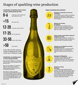 'I'm Drinking the Stars!' How Champagne is Made