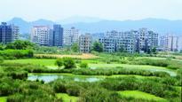 How green were Mumbai's wetlands