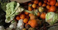 Food Waste in America vs Food Waste in France