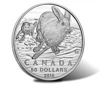 Canadian 2016 $50 Hare Silver Coin for $50