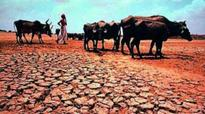 Uttarakhand districts to be declared drought-hit