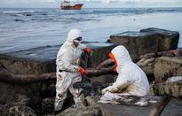 Far East oil spill kills, threatens seabirds