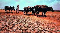 Waterman blames politicians for drought situation in Maharashtra