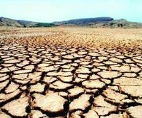 Farmer dies of cardiac arrest, kin blame it on crop failure
