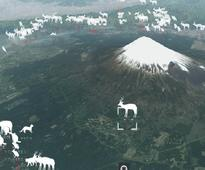 Creation of Mt. Fuji-area maps aims to reduce traffic fatalities involving wild animals