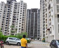 Realty players seem to have beaten slowdown in Q4