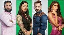 Poll results out: Bani, Lopa or Manveer: Here's who the fans think will win Bigg Boss 10!