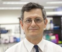 Yaron Tomer Named Chair Of Medicine at Montefiore Health System And Albert Einstein College Of Medicine