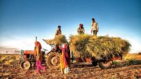 Transformation of agriculture, the need for a paradigm shift