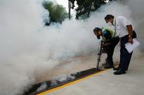 Travel firms to ask insurers to cover Zika