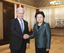 China calls for more cultural cooperation within SCO